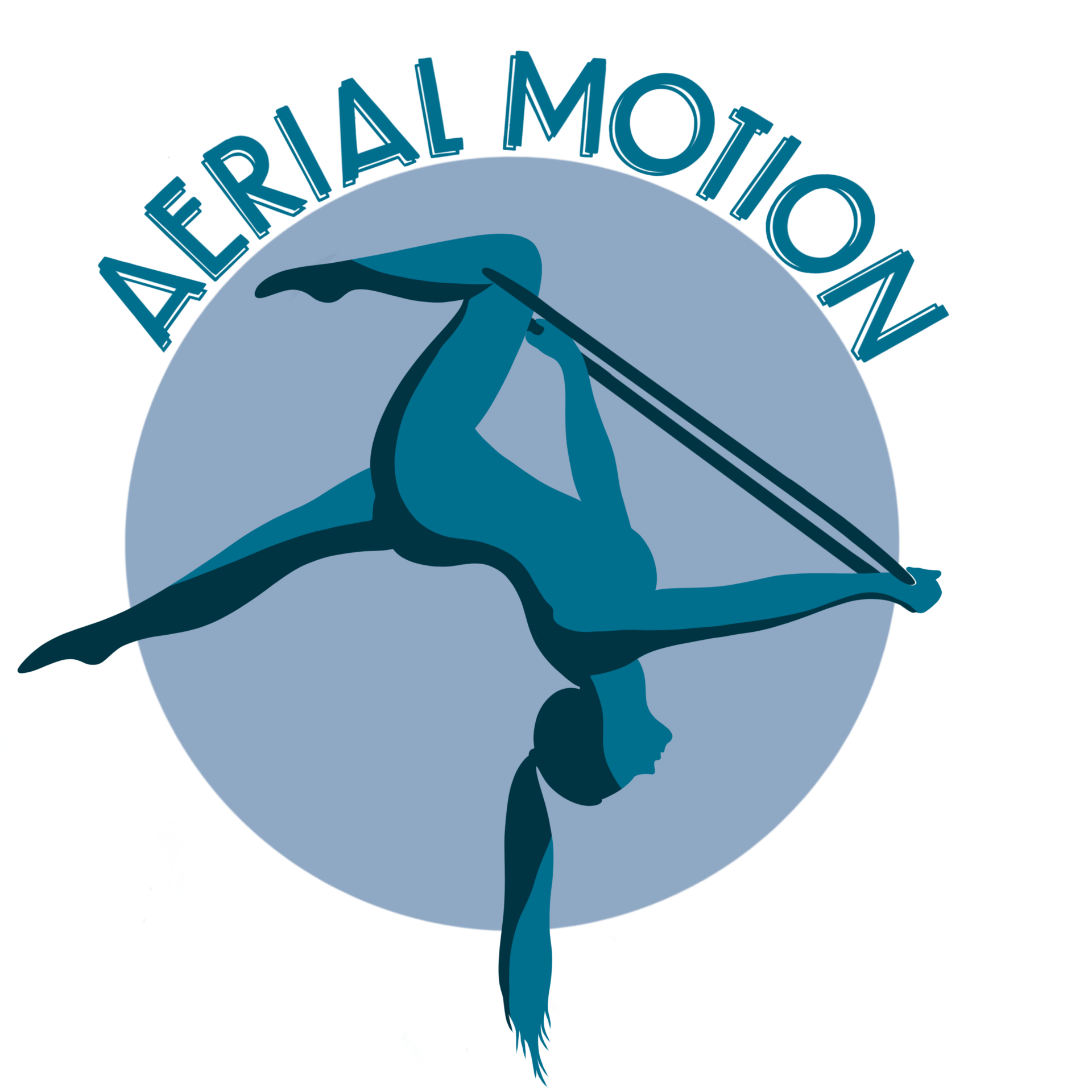 Aerial Motion